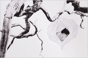 Tree I (cocoon) 2014